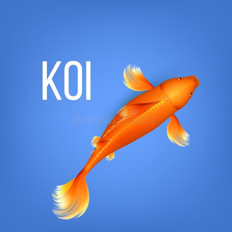 Koi Golden Fish Vector anaranjado decorativo asiático ilustración del vector