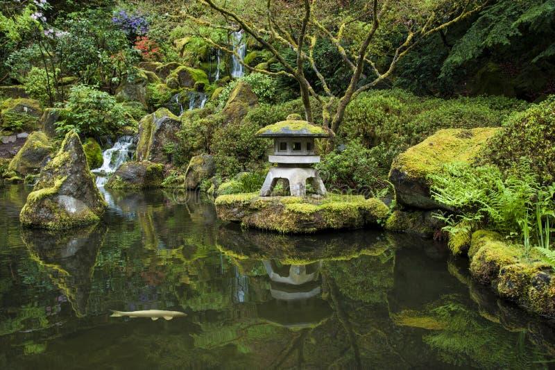 Koi in uno stagno del giardino immagine stock immagine for Stagno giardino