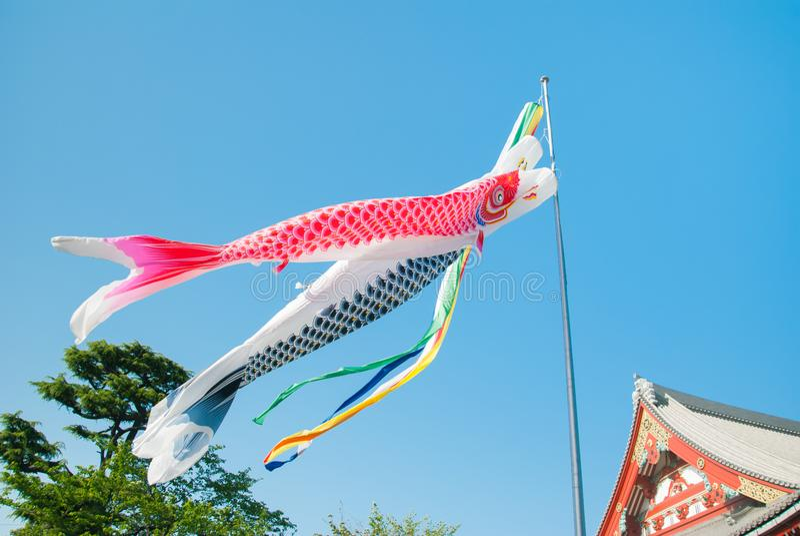 Koinobori: Japanese carp streamers flying over Senso-ji Temple in Tokyo, Japan royalty free stock photos