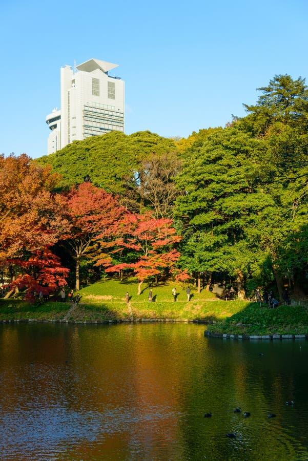 Download Koishikawa Korakuen Garden In Autumn In Tokyo Stock Image - Image of garden, colorful: 39509567