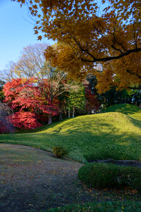 Download Koishikawa Korakuen Garden In Autumn In Tokyo Stock Photo - Image of city, metropolitan: 39509574