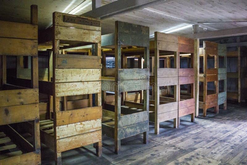 Koj łóżka wśrodku koszarów w KL Stutthof, Polska zdjęcie royalty free