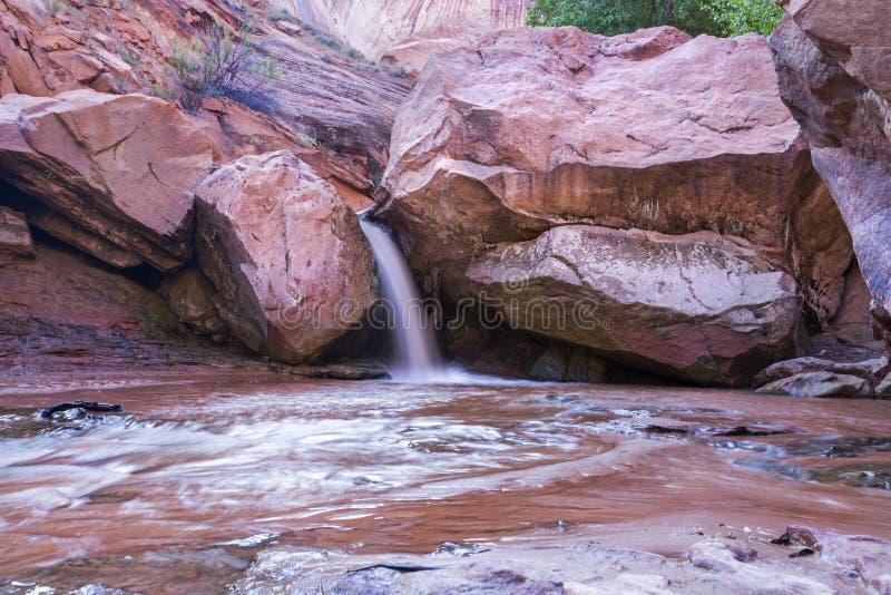 Kojote-Bergschlucht-Schlucht-Wasserfall stockbilder