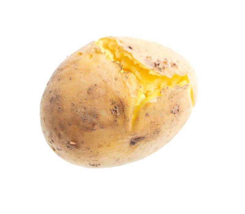 Kokade potatisar som isoleras på vit bakgrund arkivfoton
