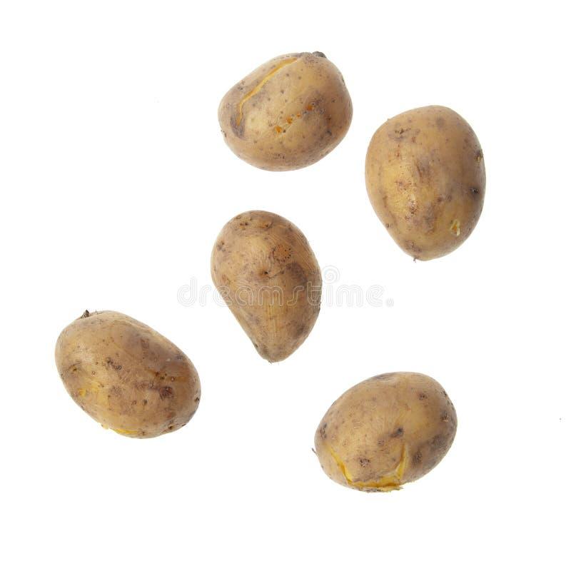 Kokade potatisar som isoleras på vit bakgrund royaltyfri foto