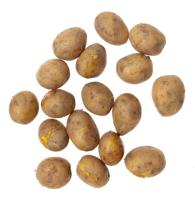 Kokade potatisar som isoleras på vit bakgrund fotografering för bildbyråer