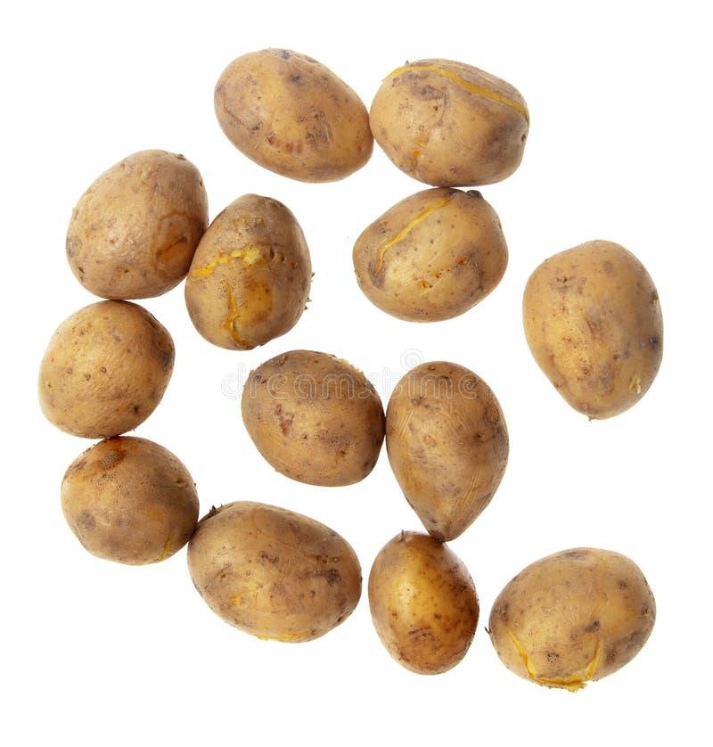 Kokade potatisar som isoleras på vit bakgrund royaltyfri bild