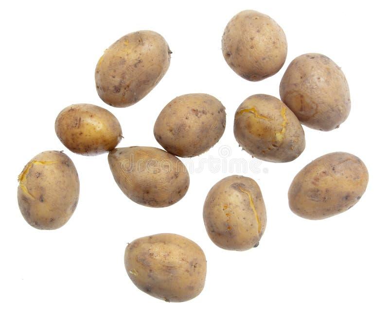 Kokade potatisar som isoleras på vit bakgrund royaltyfri fotografi