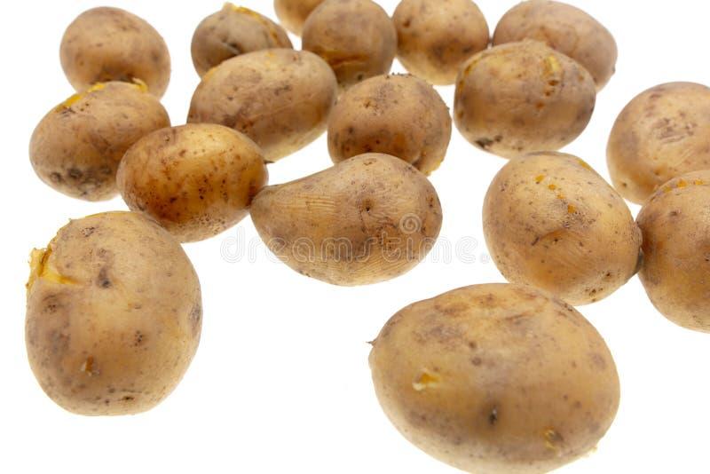 Kokade potatisar som isoleras på vit bakgrund arkivfoto