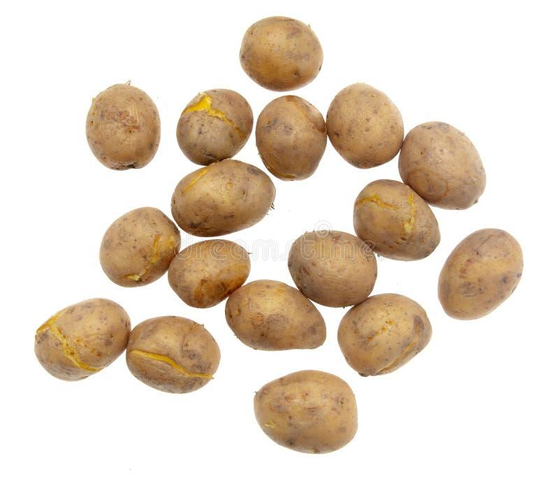 Kokade potatisar som isoleras på vit bakgrund arkivbilder