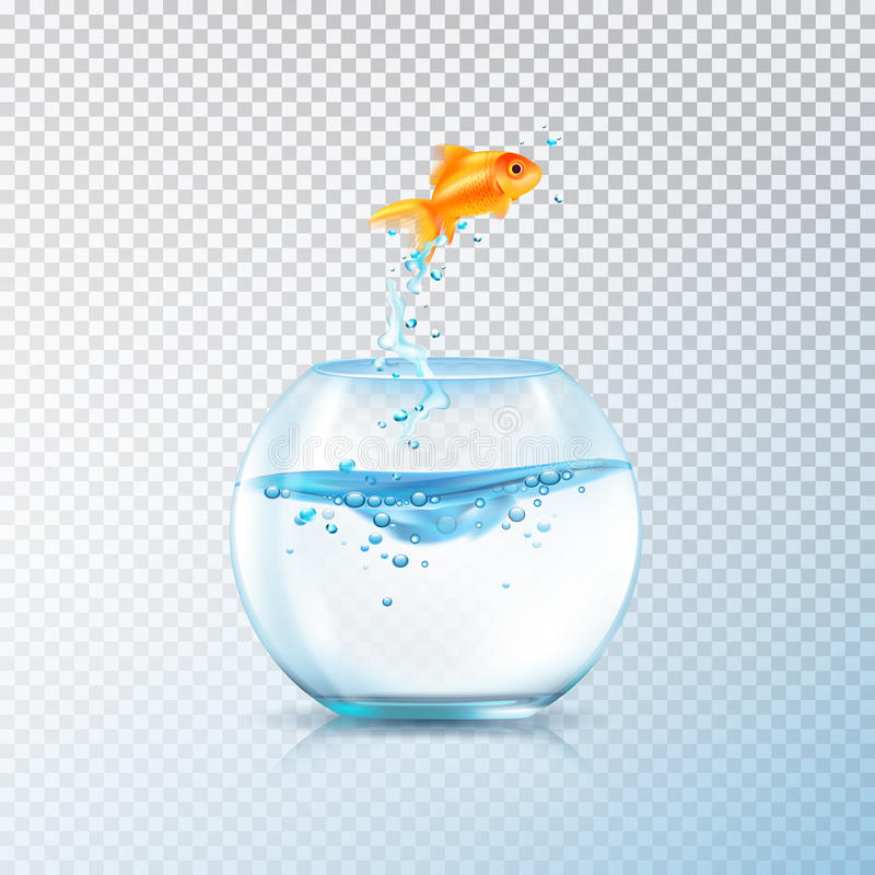 Kokande fiskakvariumsammansättning vektor illustrationer