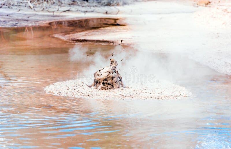 Kokande gyttjap?l i Wai-O-Tapu den geotermiska underland, Rotorua, Nya Zeeland utomhus skjutit selektivt f?r fokus royaltyfri foto