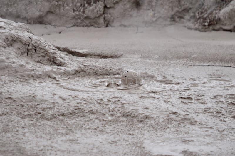 Koko borowinowy basen, Whakarewarewa Geotermiczna dolina fotografia stock