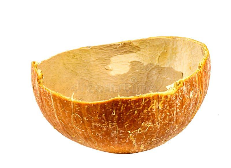 Kokosfruktskal, i halvkant, isolerat på vit bakgrund, som lätt kan användas för illustrationer eller formgivning arkivbild