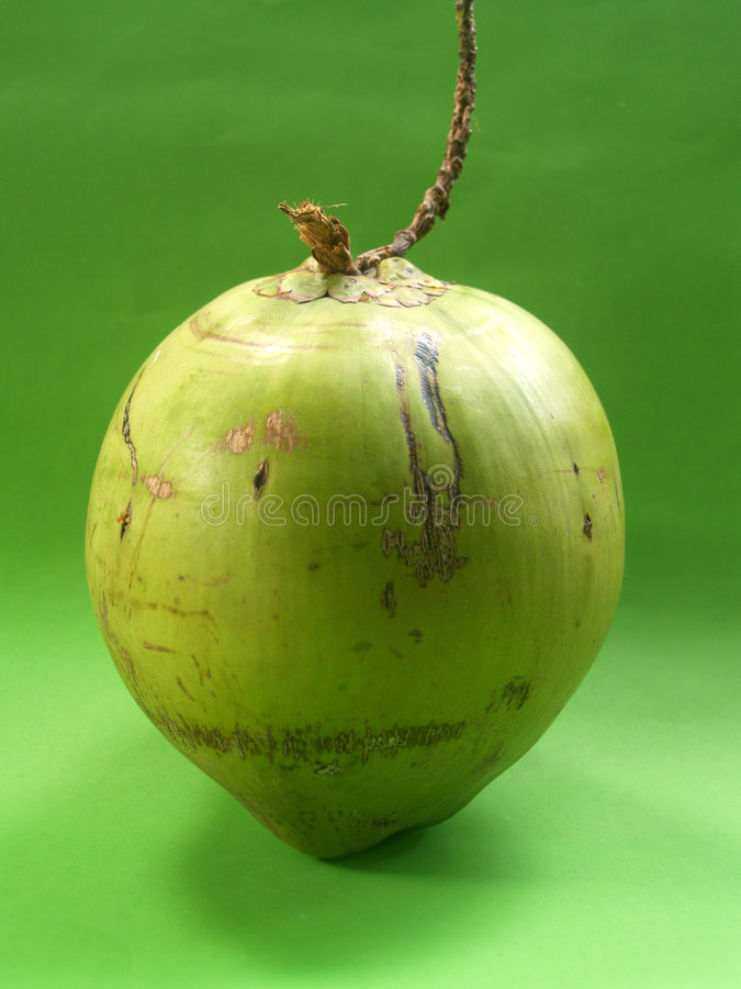 kokosnöt 6 royaltyfria foton