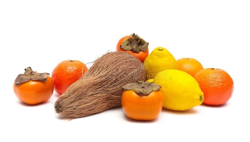 Kokosnöt, citroner, tangerin och persimoner på vitbac royaltyfri fotografi