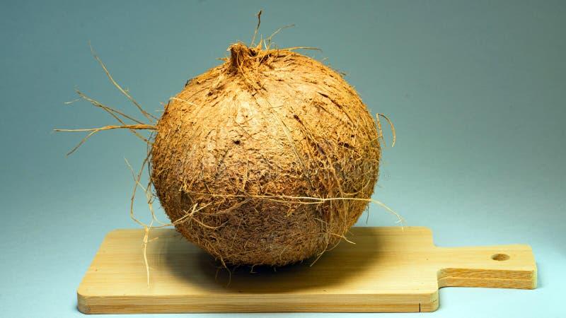 Kokosnöt exotisk frukt, frukt i skalet på ett träbräde, serie bakgrund, selektiv fokus, närbild royaltyfria foton