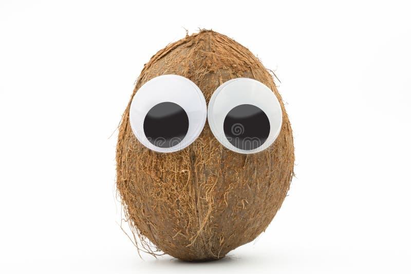 Kokosnöt med googly ögon på vit bakgrund royaltyfri foto