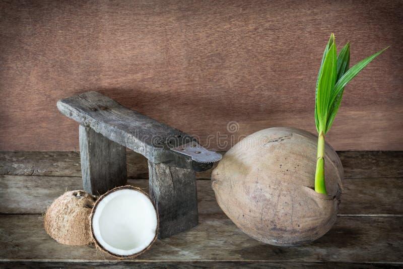 Kokosnöt och kokosnötrivjärn fotografering för bildbyråer
