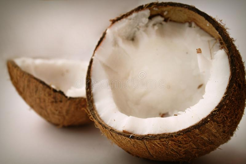 Kokosnöt och skal royaltyfria bilder