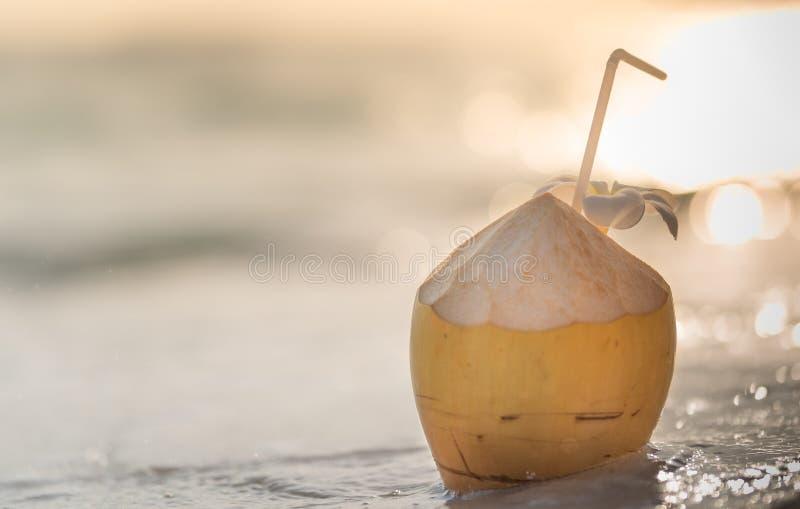 Kokosnötcoctail arkivfoton