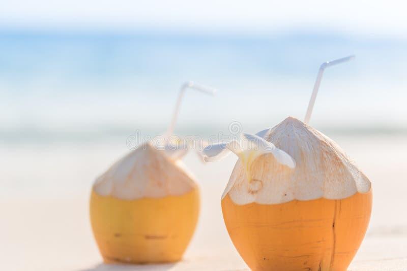 Kokosnötcoctail arkivfoto