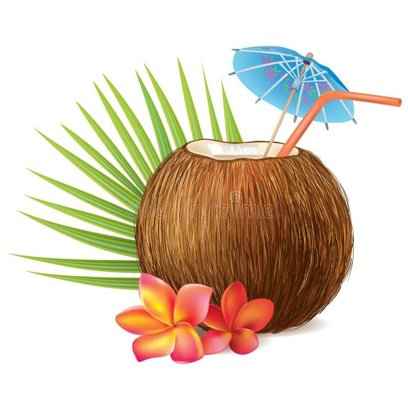 Kokosnötdrink stock illustrationer
