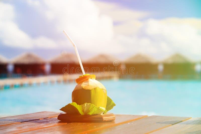 Kokosnötdrink på lyxig tropisk semesterort royaltyfri bild