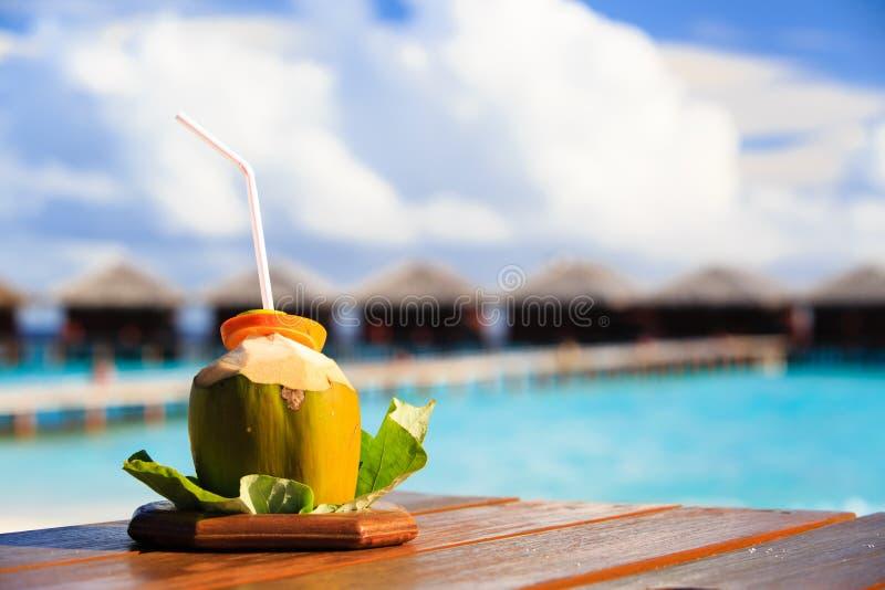Kokosnötdrink på lyxig tropisk semesterort arkivfoton