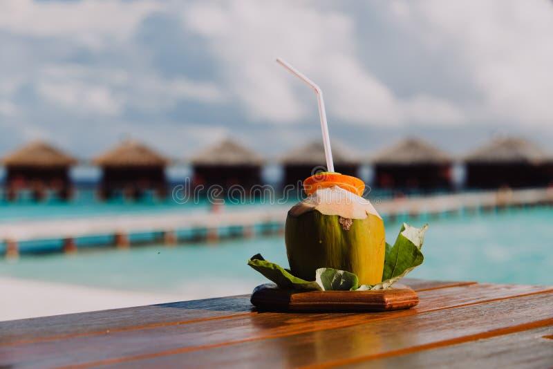 Kokosnötdrink på lyxig tropisk semesterort royaltyfri foto
