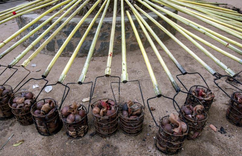 Kokosnöten fyllde korgar som fixades till poler arkivbilder