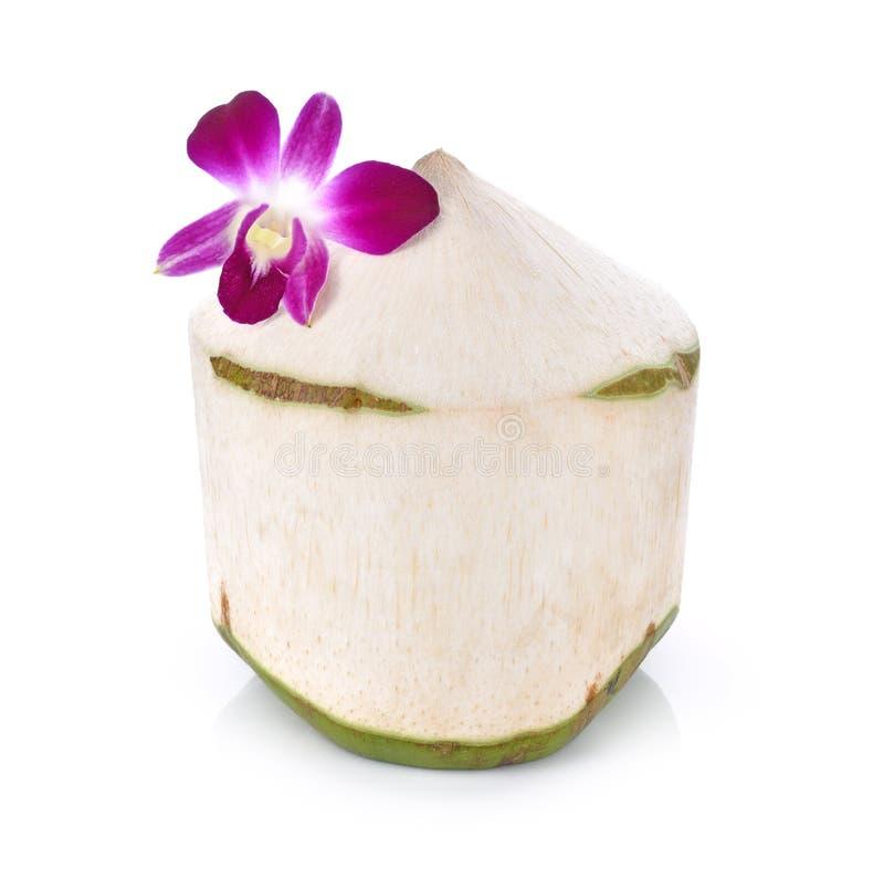kokosnötfruktsaft på vit bakgrund arkivfoton