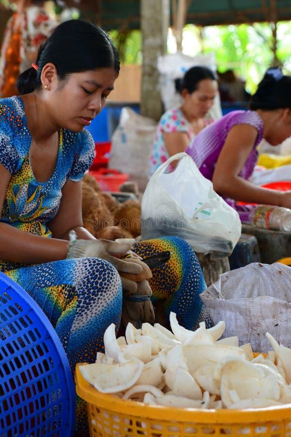 Kokosnötgodisfabrik Ben Tre Mekong deltaregion vietnam royaltyfria foton