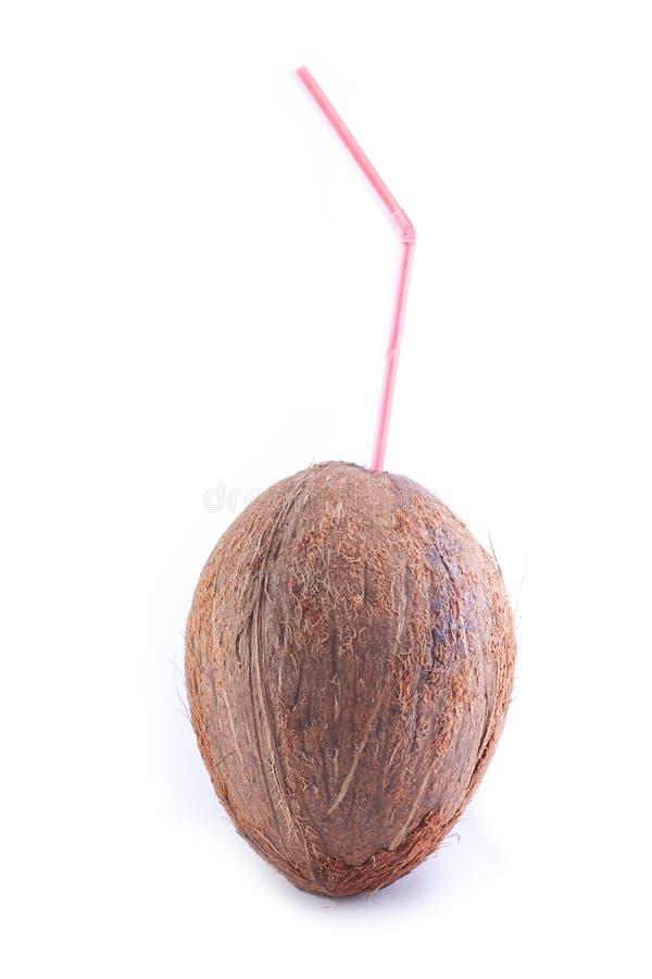 kokosnötsugrör royaltyfria bilder
