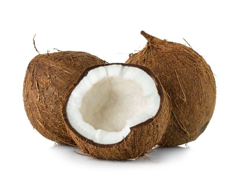 Kokosnötter som isoleras på vit fotografering för bildbyråer
