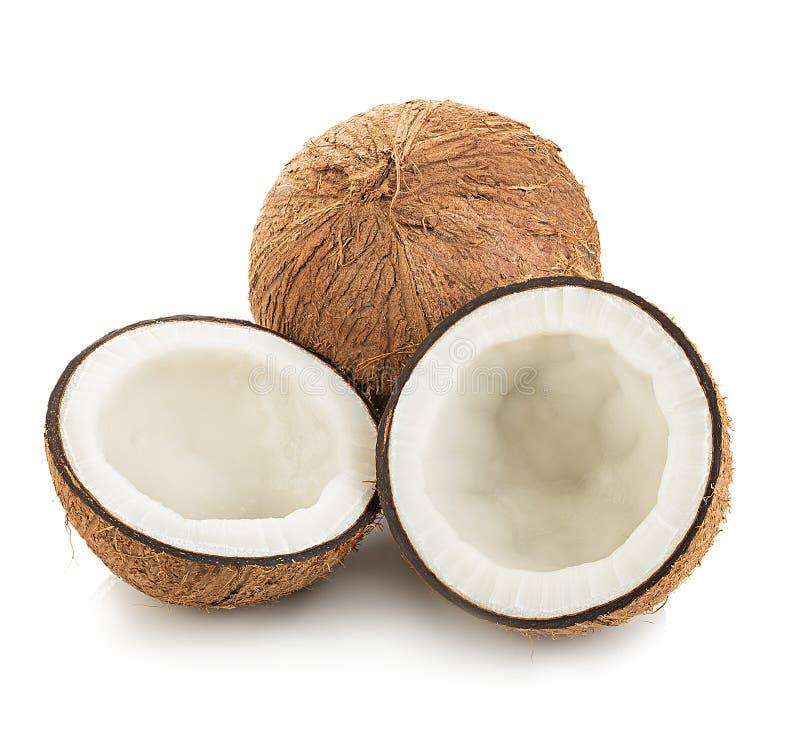 Kokosnötter som isoleras på vit royaltyfria bilder