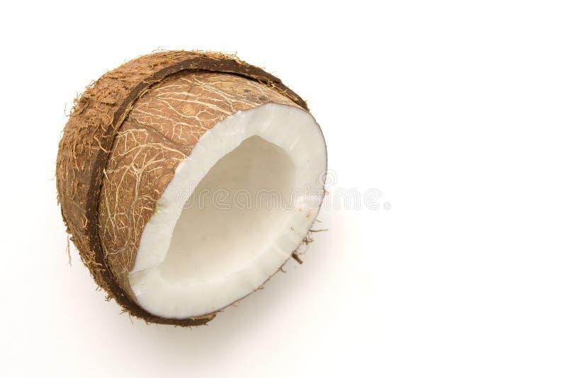 Download Kokosnötwhite arkivfoto. Bild av vegetate, hårigt, hårt - 502442