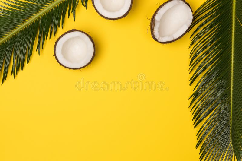 Kokosnüsse und Palmblätter lokalisiert auf gelbem Hintergrund lizenzfreie stockfotografie