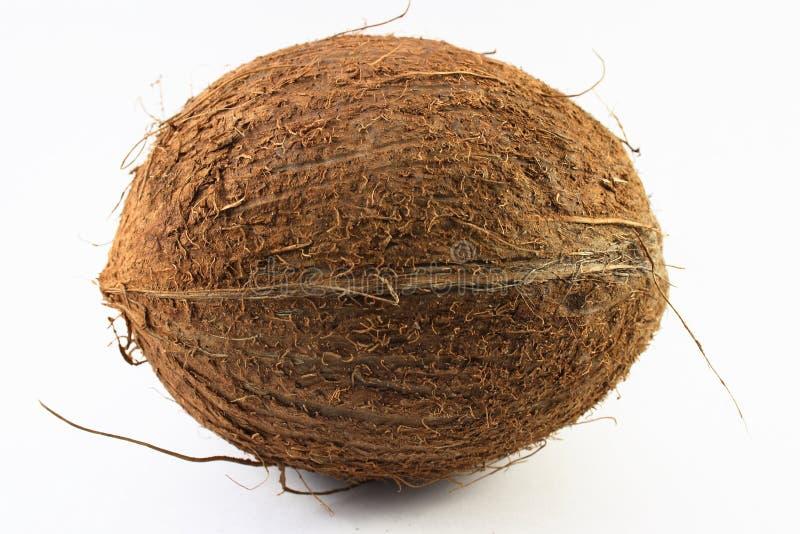 Kokosnoot royalty-vrije stock foto's