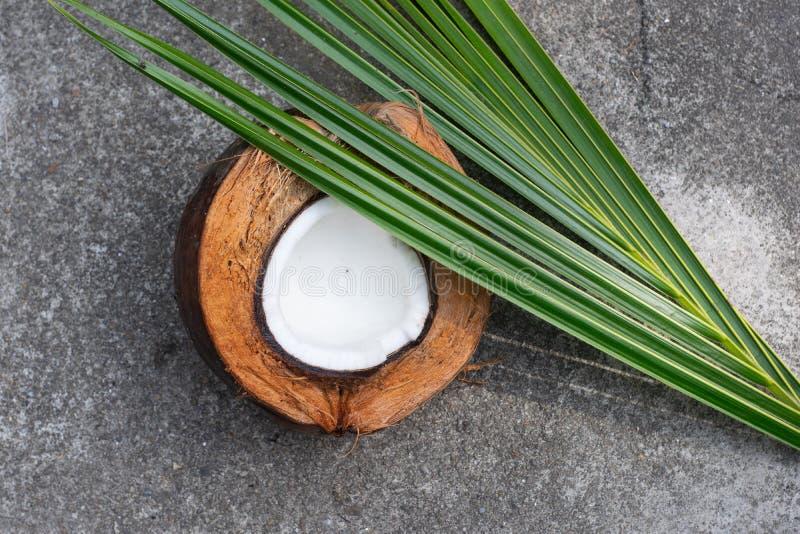 Kokosnoot, kokosnotenshell, kokosnotenblad, voorhoek stock foto's