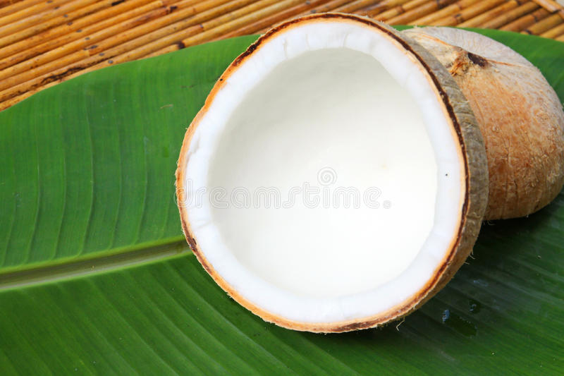 Kokosnoot met banaanbladeren royalty-vrije stock foto's