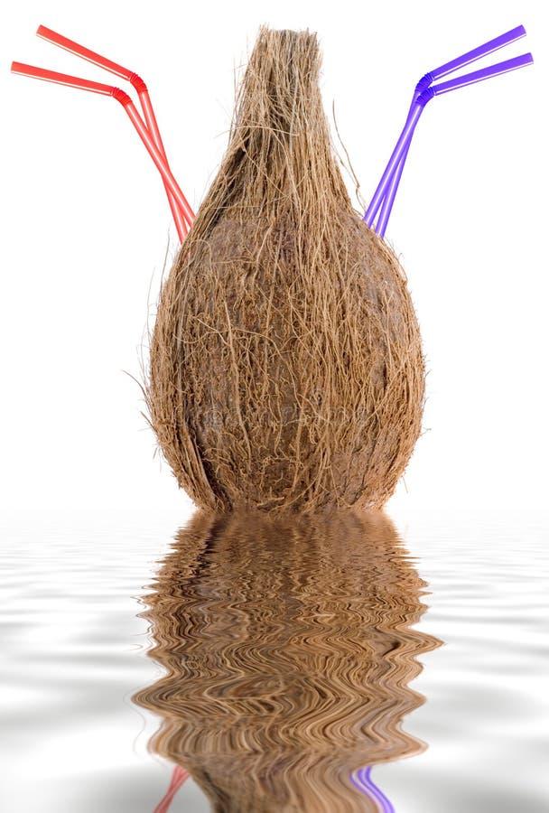 Kokosnoot met het drinken stro stock afbeeldingen