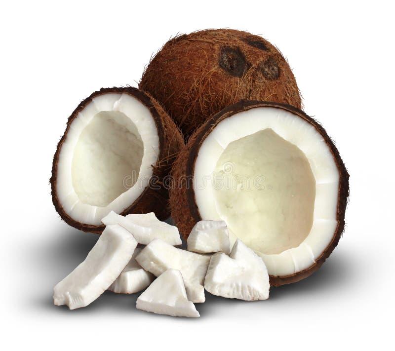 Kokosnoot op een Witte Achtergrond royalty-vrije stock foto's