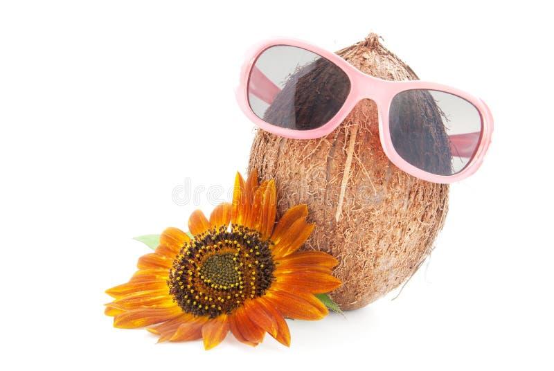Kokosnoot in zonnebril die op wit wordt geïsoleerda royalty-vrije stock afbeelding