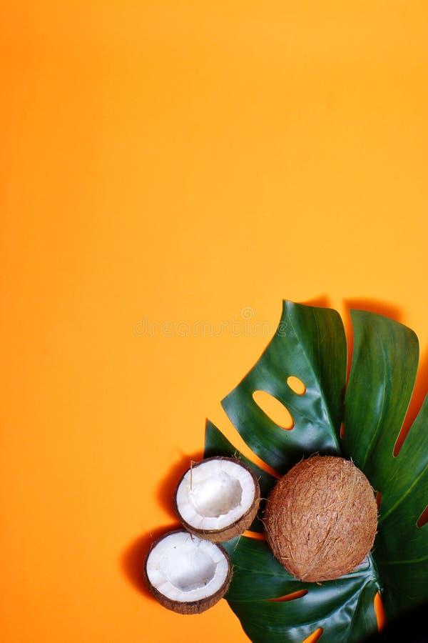 kokosnoten en tropisch blad van monsterainstallatie met op oranje achtergrond Vlakke laag, hoogste mening, exemplaarruimte Het ge royalty-vrije illustratie