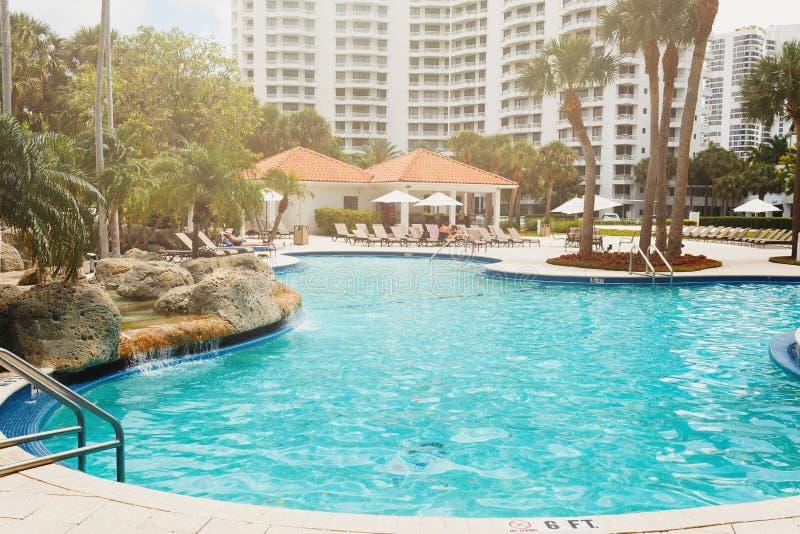 Kokosnoten groene palmen onder de zon, pool met blauw water, tropische mooie achtergrond De zomer, toerisme, vakantie, stock foto's