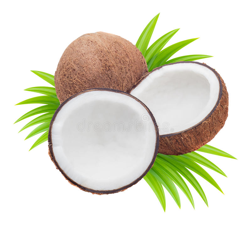 Kokosnoten met bladeren royalty-vrije stock afbeelding