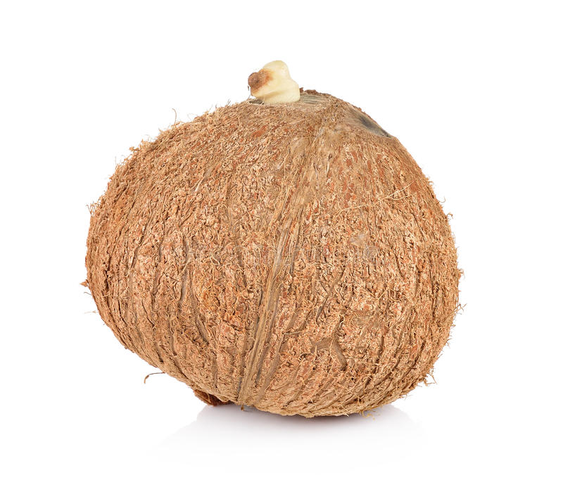 Kokosnotenclose-up op witte achtergrond royalty-vrije stock afbeelding
