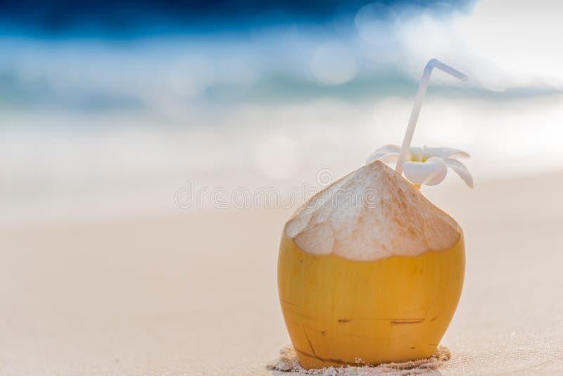 Kokosnotencocktail stock afbeeldingen
