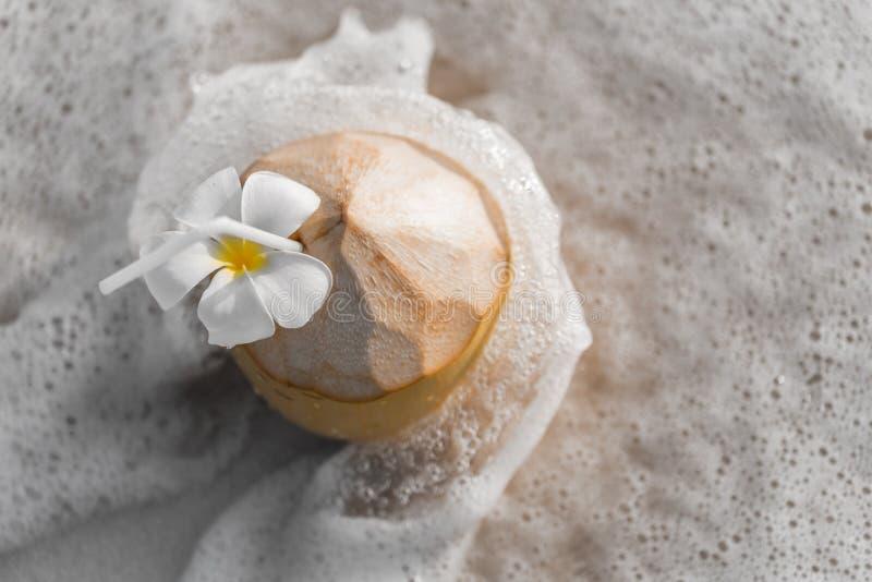 Kokosnotencocktail stock foto's